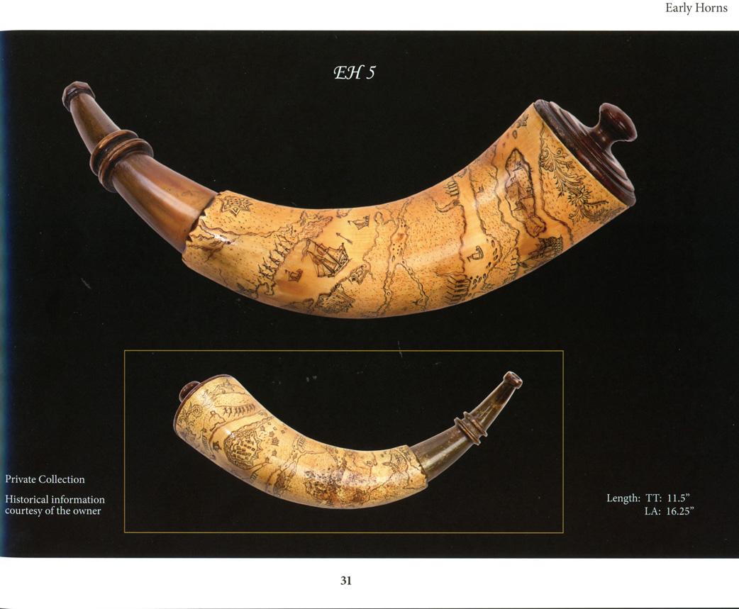 Bone Tipped & Banded Horns